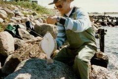 08-09-1996, Omø, Skrubbe 0,600 kg, Leif Nicolaisen