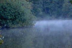 09-10-2004, Morgendis ved øen Studentersøen