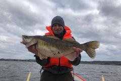 13-04-2019, Tissø, Sandart 5,195 kg, 80,0 cm, Luis Martin Morales